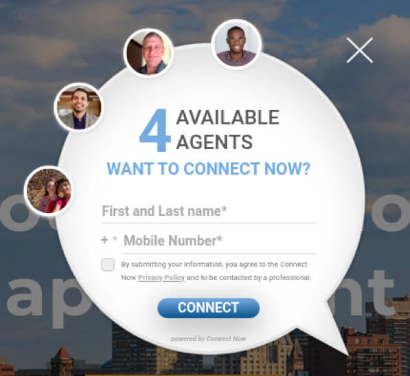 CNipIT website lead capture pop-up